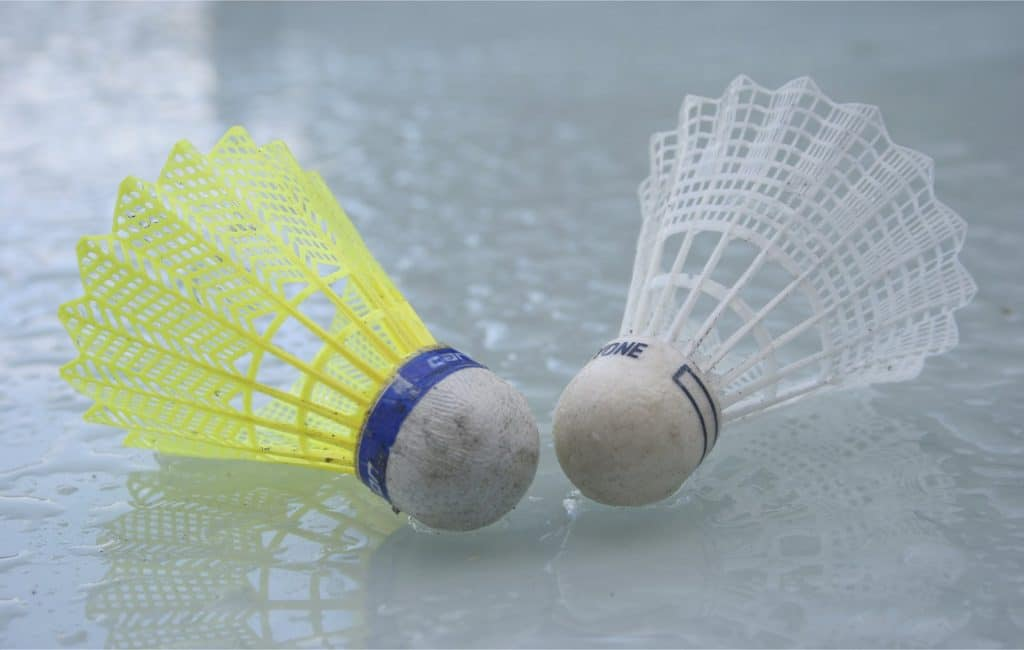 11 Best Badminton Questions and Answers (Q&A)